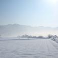 晴れた冬の朝